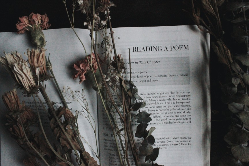 Prose about Poetry